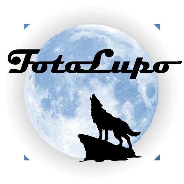 2021_FotoLupo_Logo_WEB_bianco